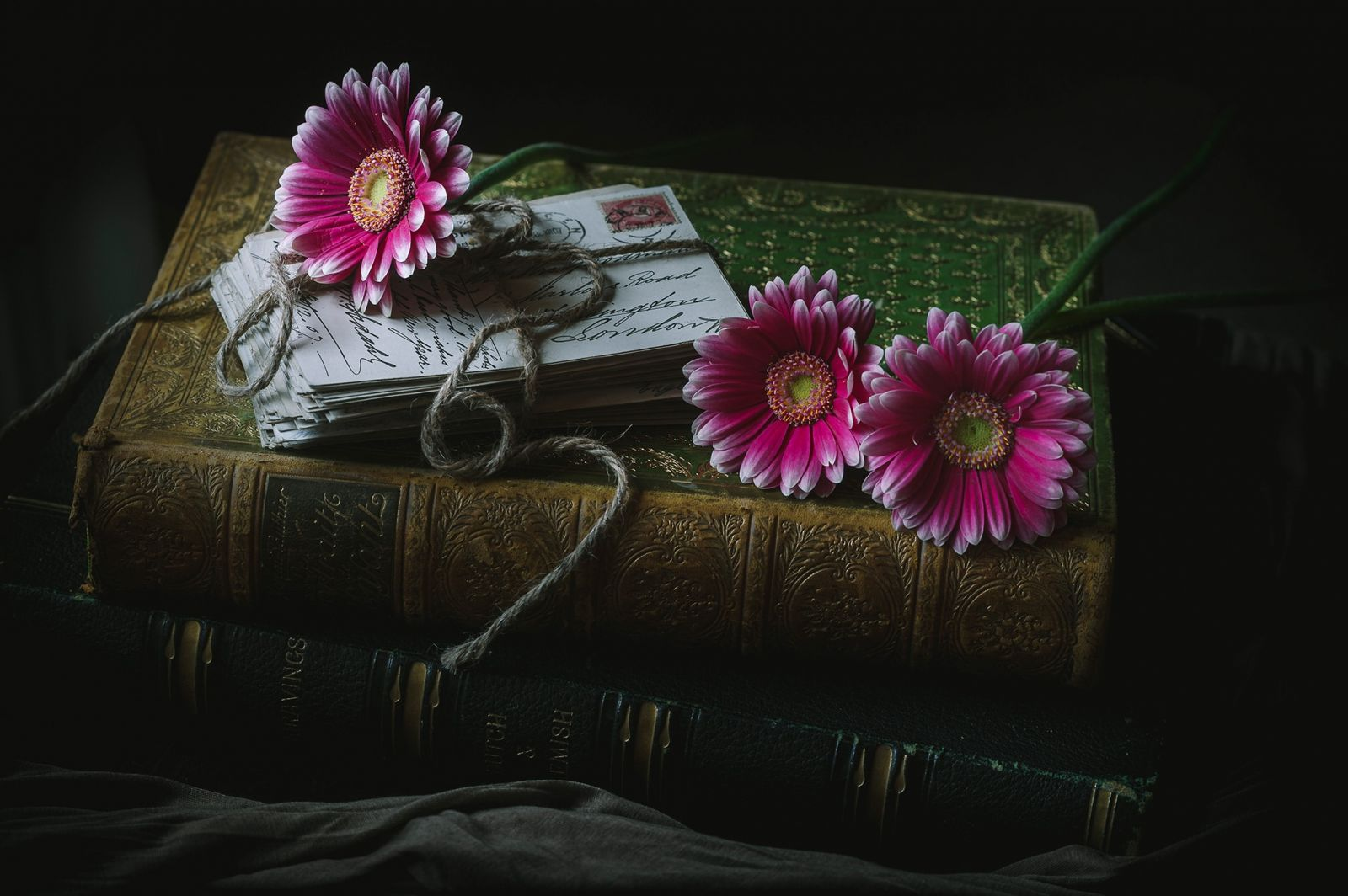 Pink flowers on book with letters tied with string
